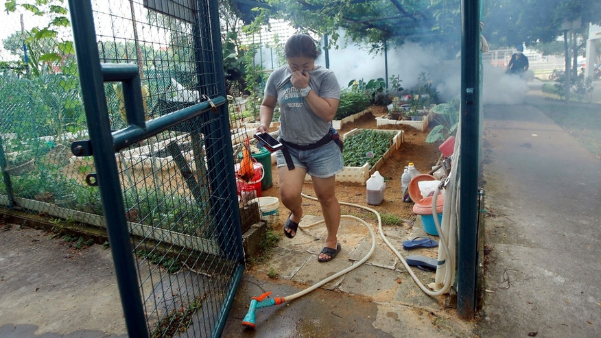 A resident leaves a community garden as a worker fogs the area at a new Zika cluster area in Singapore September 1, 2016.