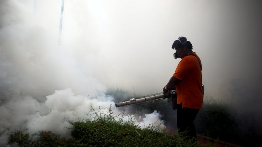 A city worker fumigates the area to control the spread of mosquitoes at a university in Bangkok