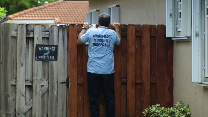 FILE - In this Tuesday, April 12, 2016, file photo, Giraldo Carratala, an inspector with the Miami Dade County mosquito control unit, peers over a fence into the backyard of a home in Miami, Fla. The government on Wednesday, Oct. 19, recommended Zika testing for all pregnant women who recently spent time anywhere in Florida's Miami-Dade County. (AP Photo/Lynne Sladky, File)