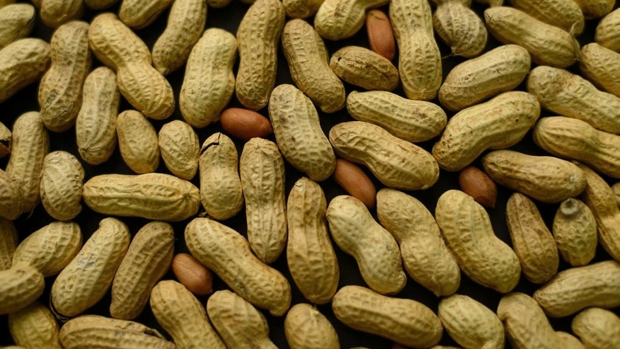 This Feb. 20, 2015 file photo, photo shows an arrangement of peanuts in New York. A study published Oct. 26, 2016, in the Journal of Allergy and Clinical Immunology says nearly half of those treated with a skin patch for peanut allergy sufferers were able to consume at least 10 times more peanut protein than they were able to consume prior to treatment.
