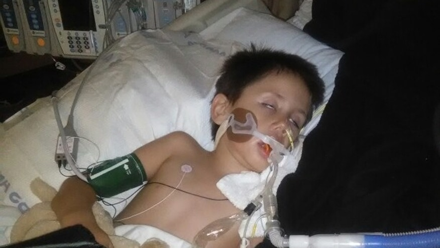 Ramirez's family had set up a GoFundMe page to help fund the 6-year-old's medical care and shared this photo.