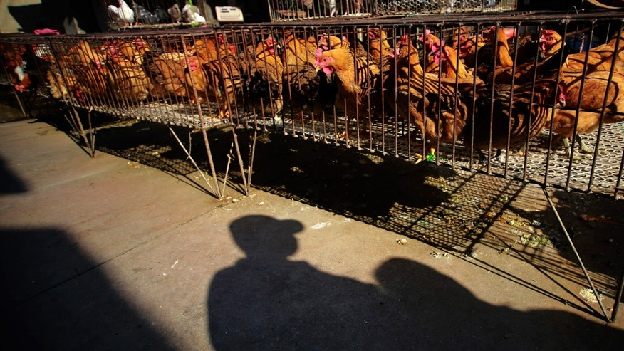 A vendor stands near chicken cages at a chicken whole sale market in Shanghai, China.