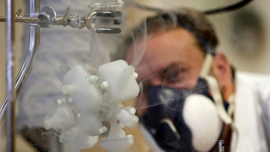 Scientist Frantisek Lizal looks at a model of a functioning human lung in Brno