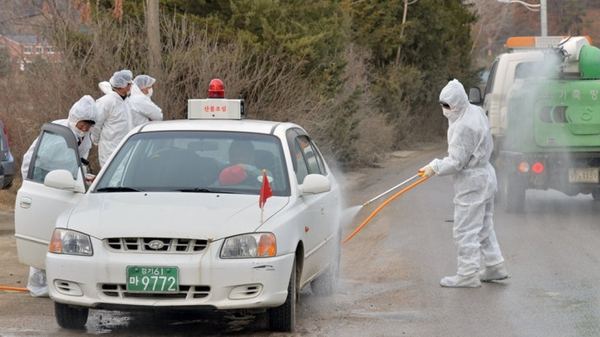 South Korean health officials disinfect a vehicle to prevent spread of bird flu in Pocheon