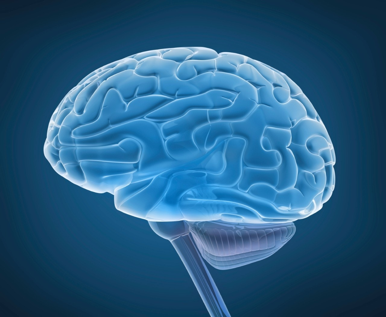 Memory research could advance treatments of mental illness