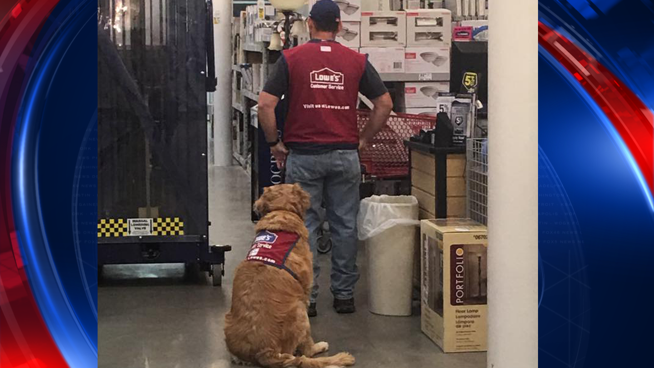 Texas Lowe's hires disabled veteran and his service dog