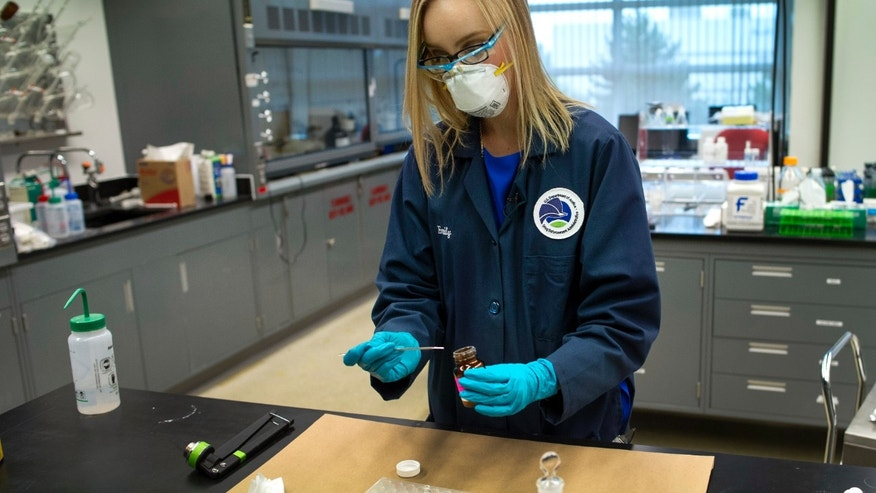 In this Tuesday, Aug. 9, 2016 photo, Drug Enforcement Administration (DEA) Forensic Chemist Emily Dye, prepares a control reference sample of fentanyl at the DEA's Special Testing and Research Laboratory in Sterling, Va. A novel class of deadly drugs is exploding across the country, with many manufactured in China for export around the world. The drugs, synthetic opioids, are fueling the deadliest addiction crisis the U.S. has ever seen. (AP Photo/Cliff Owen)