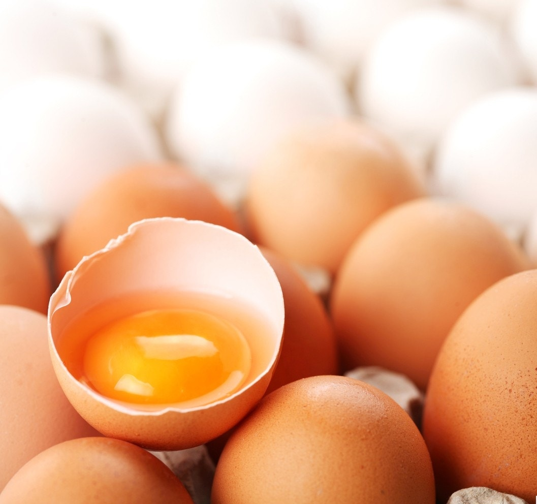 Are raw eggs safe to eat and do they have more nutrients fox news ccuart Images