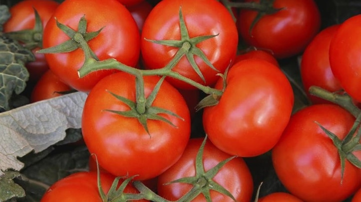In%20a%202012%20study%2C%20it%20was%20concluded%20that%20women%20who%20ate%20a%20diet%20rich%20in%20tomatoes%20had%20increased%20skin%20protection%2C%20reduced%20redness%2C%20and%20less%20DNA%20damage%20from%20ultraviolet%20rays%2C%20which%20can%20cause%20wrinkles.%20While%20you%20shouldn%E2%80%99t%20give%20up%20on%20SPF%2C%20doctors%20say%20this%20juicy%20fruit%20should%20be%20part%20of%20your%20overall%20diet%20for%20better%20looking%20skin.%20%E2%80%9CTomatoes%20contain%20lycopene%2C%20an%20antioxidant%20that%20protects%20the%20skin%20against%20UV%20radiation%2C%E2%80%9D%20says%20Dr.%20Julia%20Tzu%2C%20clinical%20assistant%20professor%20of%20dermatology%20at%20New%20York%20University.%0A