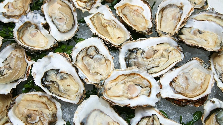 Texas woman dies from flesh-eating bacteria after raw oysters banquet