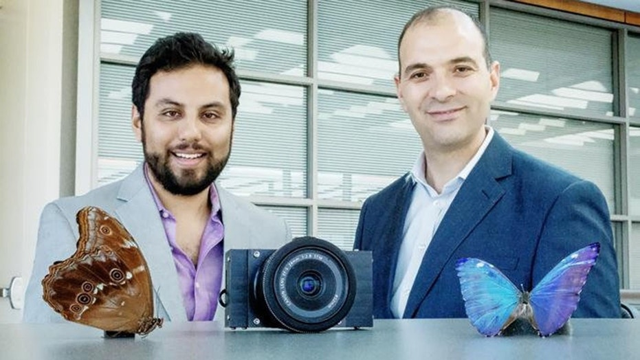 Postdoctoral researcher Missael Garcia and professor Viktor Gruev led a team that developed a camera to guide cancer surgery, inspired by the eyes of the morpho butterfly.