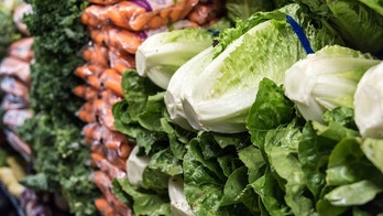 Organic Romaine lettuce for sale in a supermarket