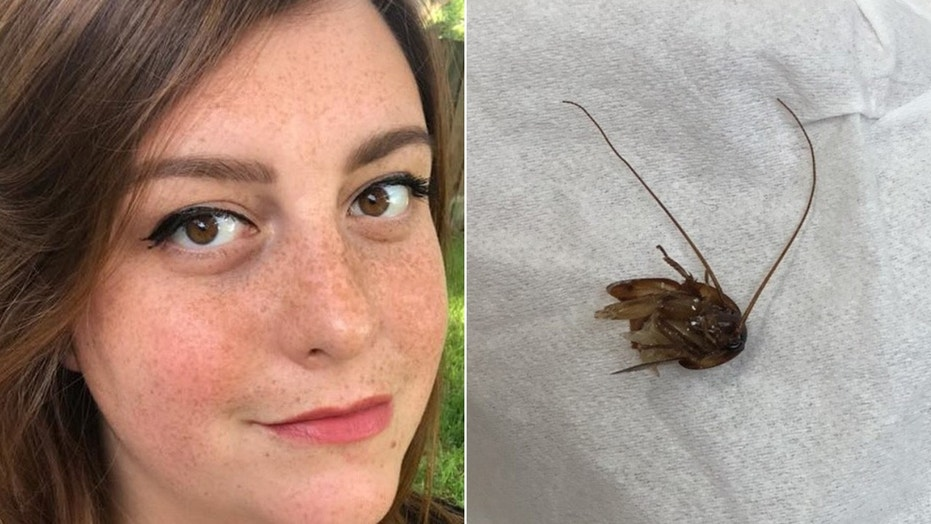 Cockroach crawls into this woman's ear, gets stuck for 9 days