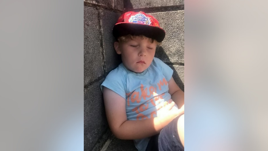 Beau, 4, was hospitalized after he accidentally touched the caterpillar on his doorstep.