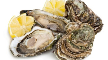 Fresh open and closed oysters with lemon isolated on white background