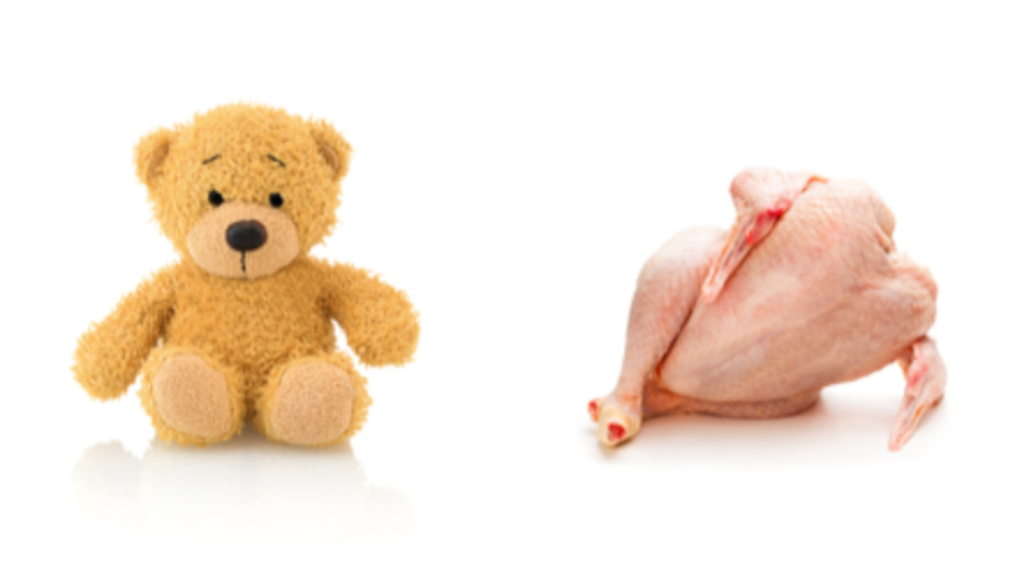 woman s ad for raw chicken teddy bears pulled from facebook