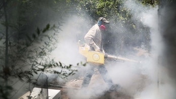 MIAMI, FL - AUGUST 02:  Carlos Varas, a Miami-Dade County mosquito control inspector, uses a Golden Eagle blower to spray pesticide to kill mosquitos in the Wynwood neighborhood as the county fights to control the Zika virus outbreak on August 2, 2016 in Miami, Florida. There is a reported 14 individuals who have been infected with the Zika virus by local mosquitoes.  (Photo by Joe Raedle/Getty Images)