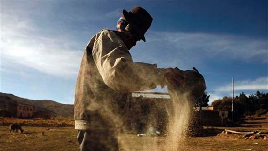 In this photo taken Oct. 25, 2010, a man cleans quinoa grain in Pacoma, Bolivia. Quinoa's rising popularity among First World foodies has been a boon to some of the poor farmers in the semiarid highlands of Bolivia.   (AP Photo/Juan Karita)