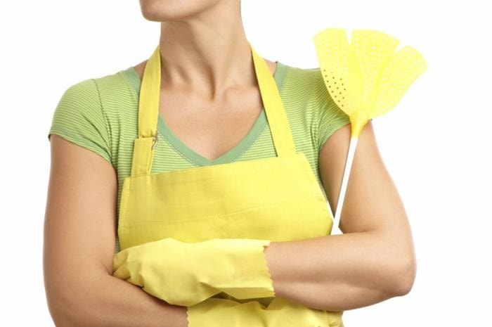 How To Get Rid Of Small Mosquitoes In Kitchen