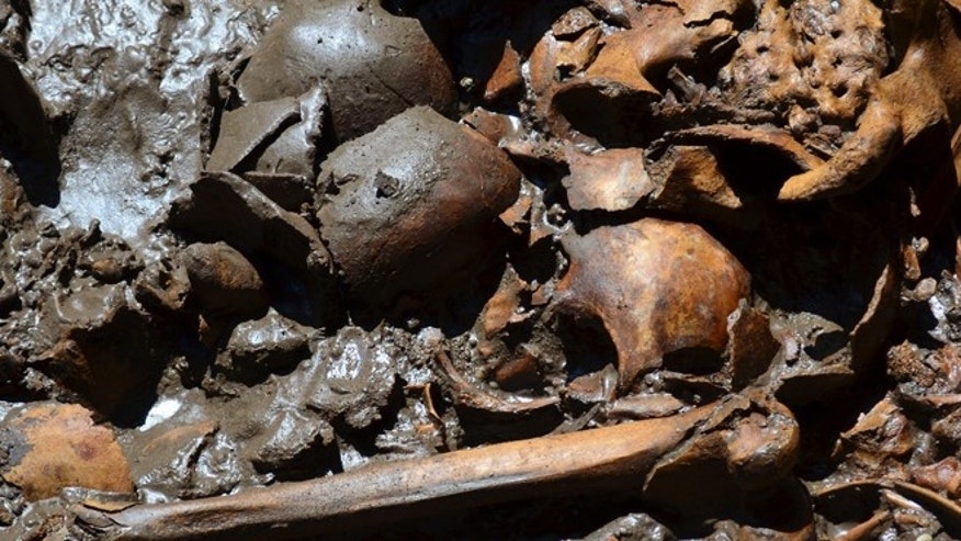 "July 16: Picture shows a human burial that was found next to what may have been a ""sacred tree"" at one edge of the plaza in Mexico City's Templo Mayor, the most sacred site of the Aztec capital. (AP Photo/INAH)"