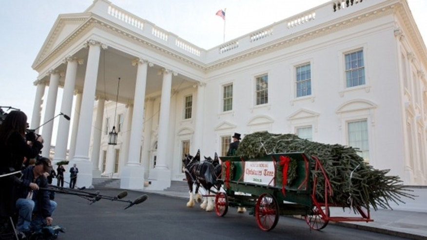 The official White House Christmas tree, a 19-foot Fraser Fir, arrives in a horse-drawn carriage at the North Portico of the White House, Nov. 23, 2012. (Official White House Photo by Chuck Kennedy)