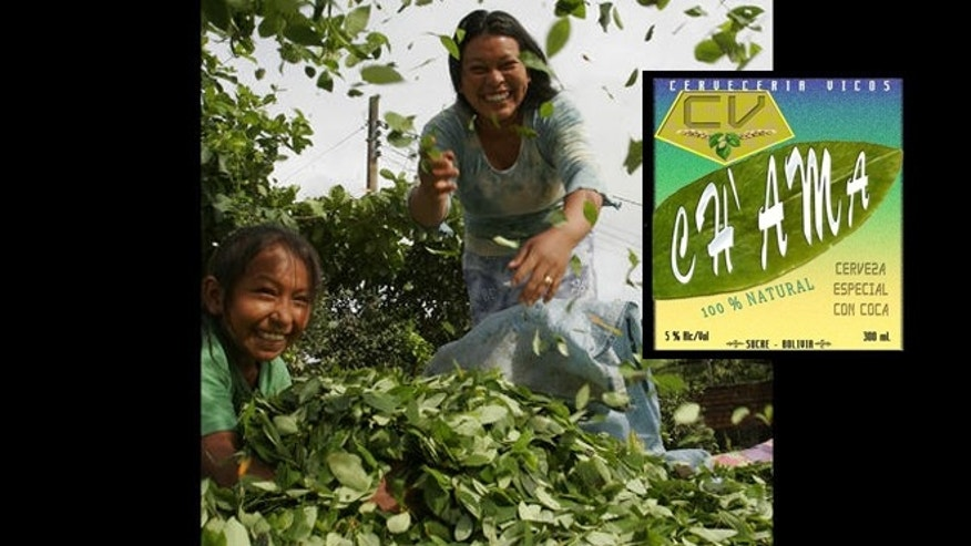 Bolivian coca farmer and her daughter put newly-cropped coca leaves to dry by the sun in the Villa 14 de Septiembre, nearly 124 miles east of Cochabamba, Bolivia.