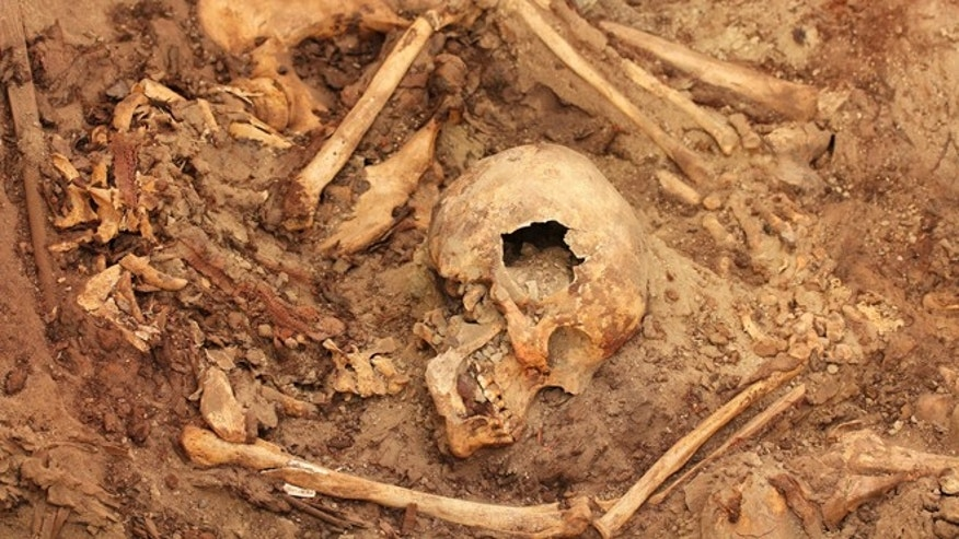In this undated photo released by the National Geographic Society, remains of those interred in a mausoleum at El Castillo funerary complex lay exactly where Wari attendants left them some 1,200 years ago, in Huarmey, Peru. Archaeologist Krzysztof Makowski Hanula, the projectâs scientific adviser, believes the newly discovered imperial tomb is where all the Wari nobles of the region were buried. The Wari forged South Americaâs earliest empire between A.D. 700 and 1000. (AP Photo/National Geographic Society, Milosz Giersz, )