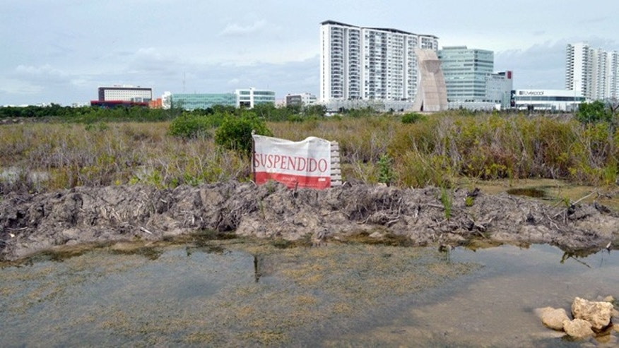"View of a sign reading ""Suspended"" at a partially destroyed section of the Tajamar mangrove in Cancun, Quintana Roo state, Mexico on January 21, 2016. Activists sparked a fierce controversy with authorities who seek to cut down 50 hectares of the Tajamar mangrove and build a housing project called Malecon Tajamar in Cancun.  AFP PHOTO/ ELIZABETH RUIZ / AFP / ELIZABETH RUIZ        (Photo credit should read ELIZABETH RUIZ/AFP/Getty Images)"
