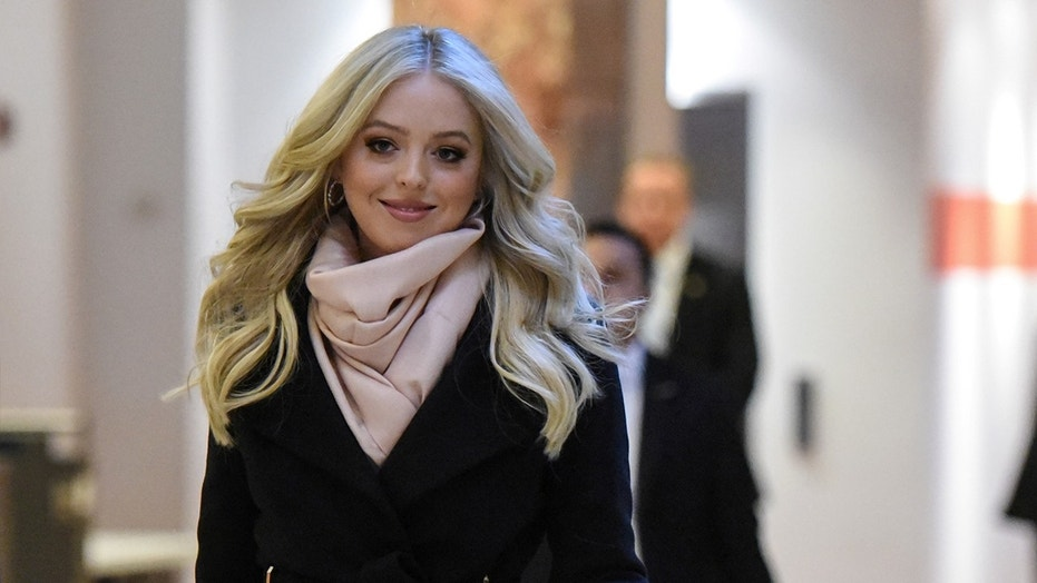 Vocal fans both love and loathe Tiffany Trump's official portrait look.