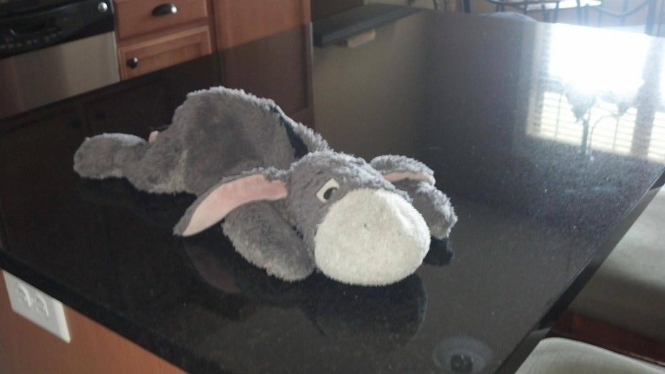 Justin Ihle, William's father, said that Eeyore (pictured above) has been missing since April 4.
