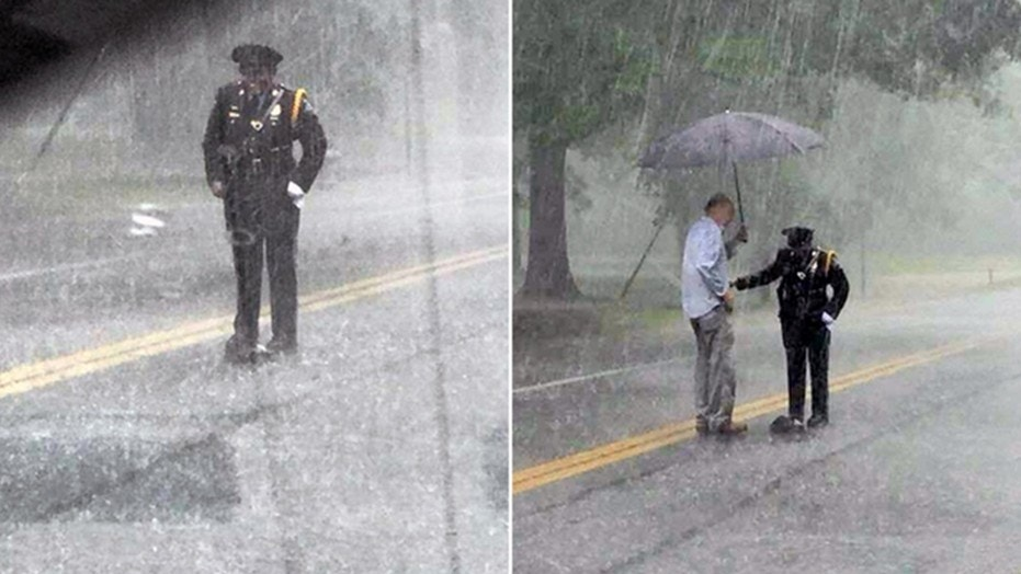 A Maryland police officer is going viral for helping a turtle cross in the road in the pouring rain.