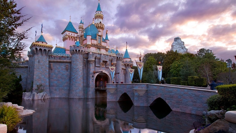 A couple at Disneyland proposed to each other the same time in front of Cinderella's castle.