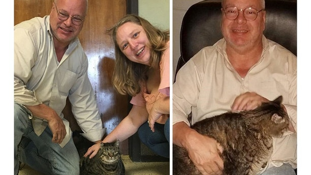 Meatloaf, a 12-year-old, 30-pound cat  adopted by a couple. Photo Kings Harvest Pet Rescue No Kill Shelter