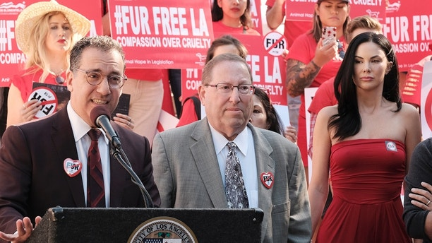 Councilman Paul Koretz, left speaks as Councilman Bob Blumenfield, center, listens during a news conference while joined by protesters with the People for the Ethical Treatment of Animals (PETA) at Los Angeles City Hall, Tuesday, Sept. 18, 2018. Los Angeles would become the largest city in the U.S. to ban the sale of fur products if the City Council approves a proposed law backed by animal activists who say the multibillion-dollar fur industry is rife with cruelty. (AP Photo/Richard Vogel)