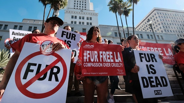 Protesters with the People for the Ethical Treatment of Animals (PETA) hold signs to ban fur in Los Angeles prior to a news conference at Los Angeles City on Tuesday, Sept. 18, 2018. Los Angeles would become the largest city in the U.S. to ban the sale of fur products if the City Council approves a proposed law backed by animal activists who say the multibillion-dollar fur industry is rife with cruelty. (AP Photo/Richard Vogel)