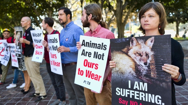 Emily Rohr, right, joins fur ban protesters with the People for the Ethical Treatment of Animals (PETA) prior to a news conference at Los Angeles City on Tuesday, Sept. 18, 2018. Los Angeles would become the largest city in the U.S. to ban the sale of fur products if the City Council approves a proposed law backed by animal activists who say the multibillion-dollar fur industry is rife with cruelty. (AP Photo/Richard Vogel)