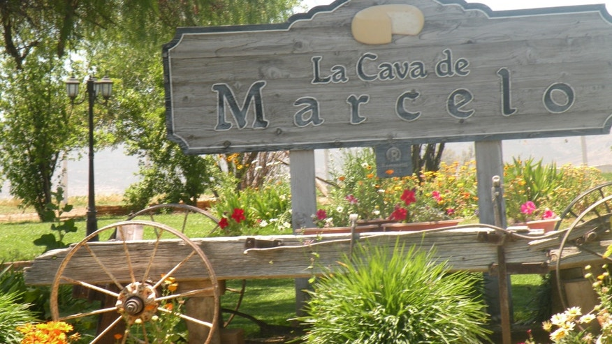 "La Cava de Marcelo, or ""Marcelo's Cave,"" is the only cheese cellar open to the public in Mexico."