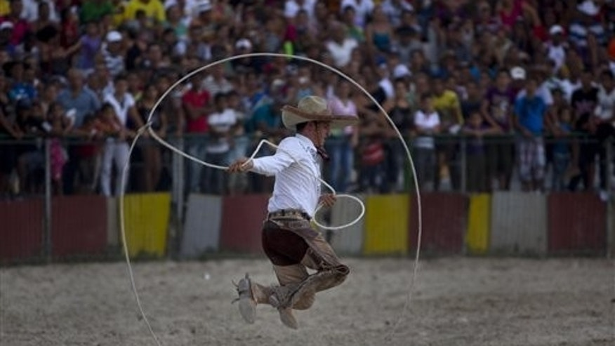 In this Friday, March 21, 2014 photo, a cowboy from Mexico displays his lasso handling skills during a rodeo event, part of the 17th Boyeros Cattlemen's International Fair in Havana, Cuba. Cuba's eight-day international rodeo festival is half party and half a cowboy-skill showcase. (AP Photo/Ramon Espinosa)