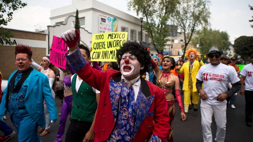 "Clowns and other circus performers carry signs that read in Spanish ""All of Mexico wants a circus with animals,"" and ""Yes to a circus with animals,"" as they protest a new city ban on animals in circuses, in Mexico City, Tuesday, June 10, 2014. The city was the latest of several cities and states in Mexico to ban circus animal acts, though the measure passed Monday does not apply to shows with dolphins or bullfighting, nor does it prohibit the use of animals in Mexico's traditional rodeos. (AP Photo/Rebecca Blackwell)"