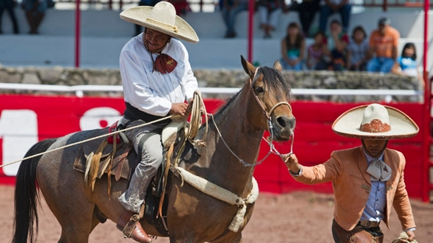 In this July 10, 2016 photo, with the help of a guide and his brace gripping his lower back, charro or Mexican cowboy Salvador Espinosa grips his lasso before downing a young bull at the Mexican rodeo arena in Cuautitlán Izcalli, Mexico. Espinoza needs help mounting the horse and doesnt rely on the traditional stirrups attached to the saddle. But once on horseback, hes a skilled equestrian and a fearless competitor. (AP Photo/Nick Wagner)