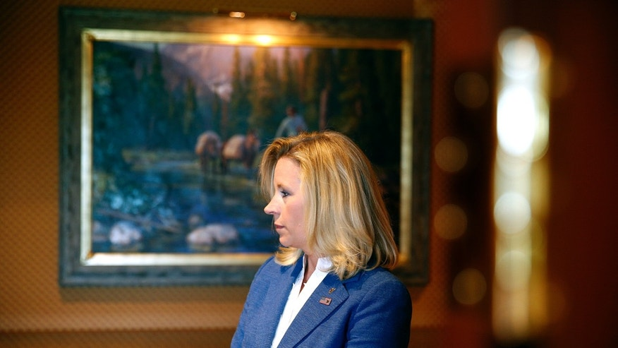 Liz Cheney at the Little America Hotel and Resort in Cheyenne, Wyoming on July 17, 2013.