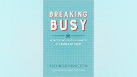 breaking busy book cover