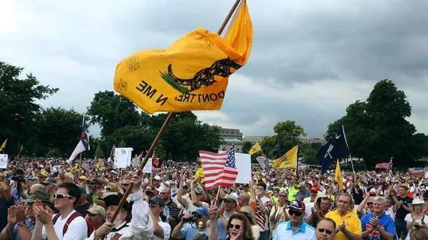 "The crowd cheers speaker Glenn Beck (not in picture) during a Tea Party rally to ""Audit the IRS"" in front of the U.S. Capitol in Washington June 19, 2013.   REUTERS/Gary Cameron   (UNITED STATES - Tags: POLITICS) - GM1E96K06D801"