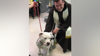 Blessing of the Animals Courtesy Bergen County Animal Shelter