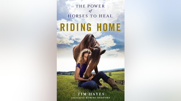 Tim Hayes book cover