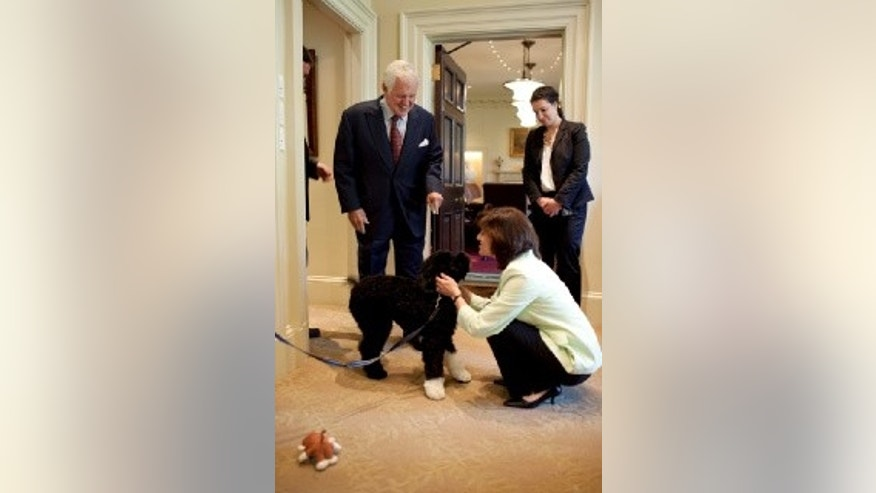 Sen. Kennedy and his wife Vicki greet Bo in the outer Oval Office of the White House. April 21, 2009 (WH Photo)