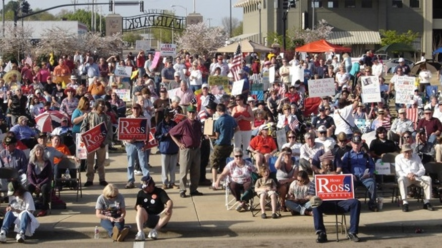 Tea Party activists gather at a rally April 3 in Tupelo, Miss. (FoxNews.com)