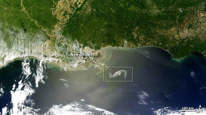 A massive oil slick in the Gulf of Mexico continued spreading on April 29, 2010, moving perilously close to shore. The Moderate Resolution Imaging Spectroradiometer (MODIS) on NASA's Terra satellite captured a natural-color image of the oil slick just off the Louisiana coast. Here a wide-area view. The oil slick appears as dull gray interlocking comma shapes, one opaque and the other nearly transparent. The northwestern tip of the oil slick almost touches the Mississippi Delta.