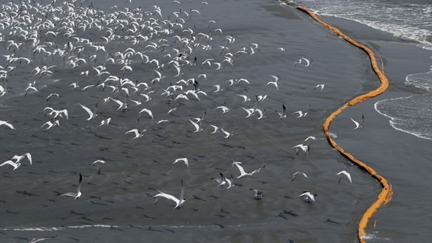 May 1: Birds fly past oil booms that were placed in preparation of the looming oil spill from last week's collapse and spill of the Deepwater Horizon oil rig along the shoreline, south of Venice, La.