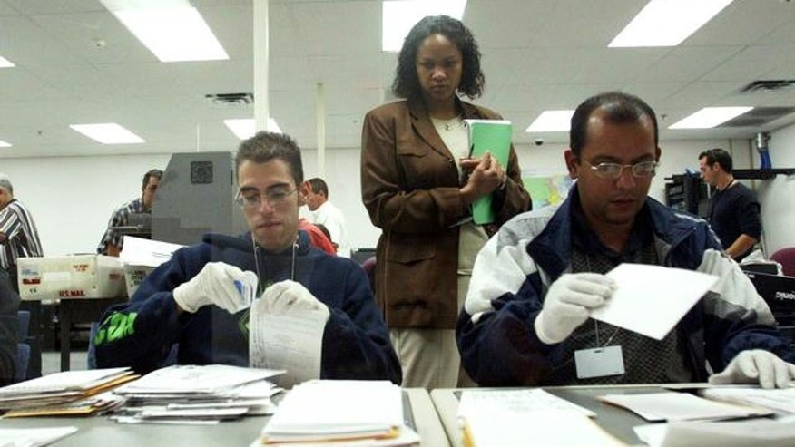 Temporary election employees sort absentee ballots in a Miami-Dade County elections office, Doral, Florida. (AP)